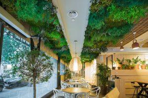 Reservaciones en hoteles biofilicos, hotel con diseño biofilico